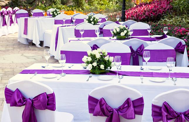 Renta de sillas y mesas for Ofertas en mesas y sillas
